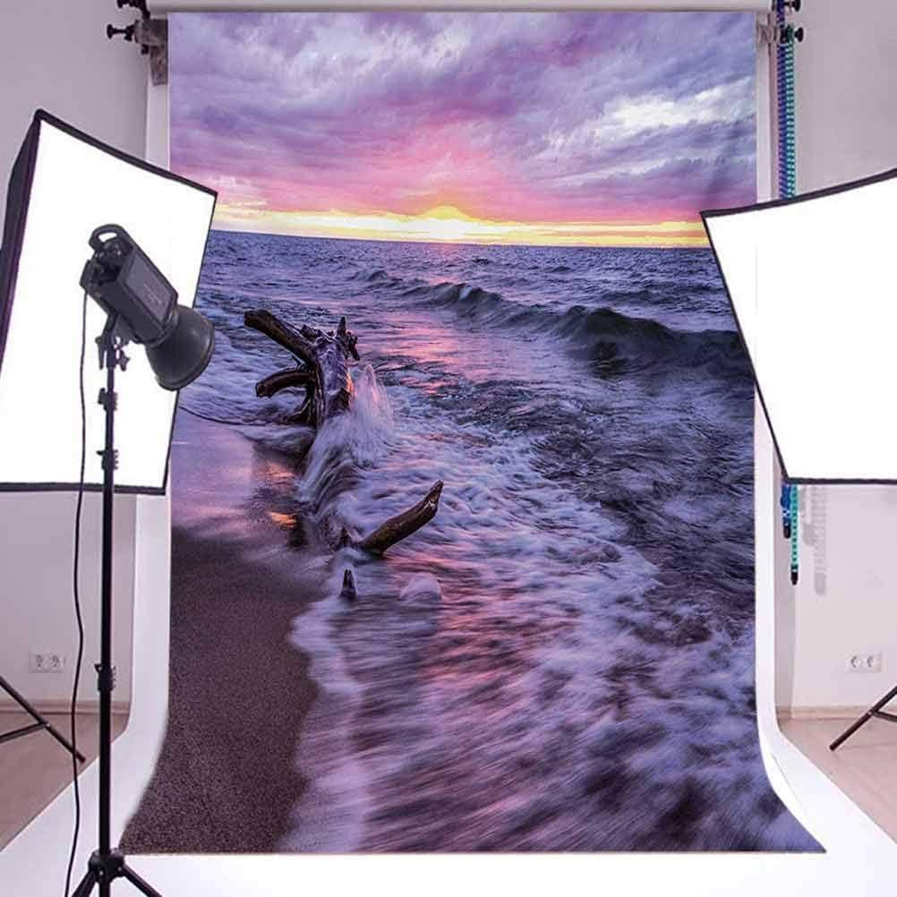Driftwood Beach Landscape Wavy Sea Cloudy Sky at Sunset Digital Image Background for Kid Baby Boy Girl Artistic Portrait Photo Shoot Studio Props Video Drape Vinyl 10x12 FT Photography Backdrop