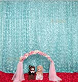 B-COOL Baby Blue Rosette Backdrop 5x7FT 3d floral Backdrop curtain Rosette Curtain Backdrops Satin Rosette Backdrops photography background backdrop