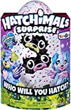 Hatchimals Surprise – Puppadee – Hatching Egg with Surprise Twin Interactive Hatchimal Creatures and Nest Accessory by Spin Master,...