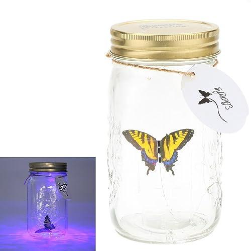 Botellas cristal Decoracion: Amazon.es