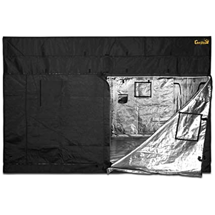 Gorilla Grow Tent GGT1010 Tent, 10 by 10 by 6-Feet/11-Inch, Black