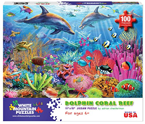 Review White Mountain Puzzles Dolphin
