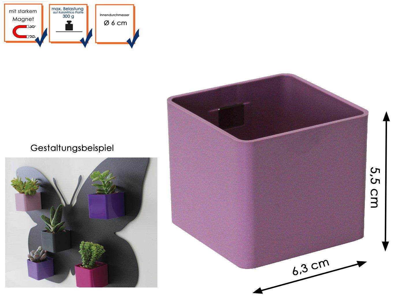 Wandaufbewahrung Wanddeko Metallscheibe Ø 5 cm für Magnettöpfe KalaMitica