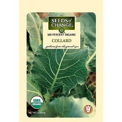 Seeds of Change Certified Organic Collard: Garden & Outdoor