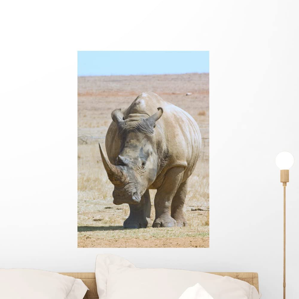 African white rhino photo window wall sticker wall mural 45200067ww