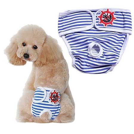Bragas Para Perros En Celo Pañal Para Perros Pañales Perro Macho ...