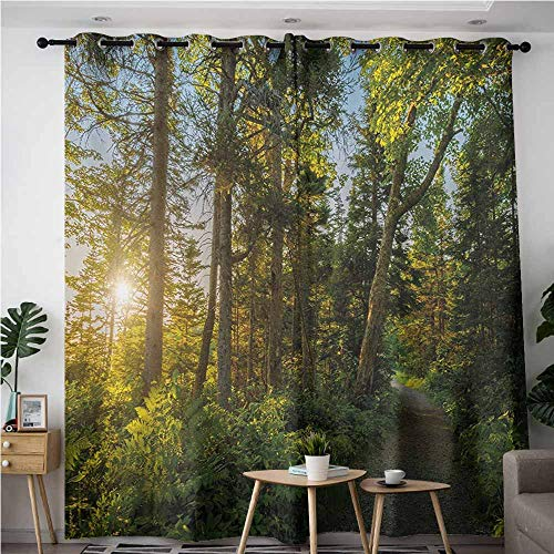 VIVIDX Indoor/Outdoor Curtains,Landscape National Park in Cape Breton Highlands Canada Forest Path Trees Tranquility Photo,Blackout Draperies for Bedroom,W84x108L,Blue Green