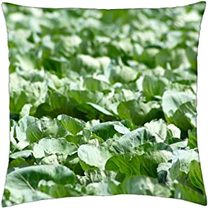 LESGAULEST Throw Pillow Cover (18x18 inch) - Cabbage Farm Food Agriculture Harvest Plant