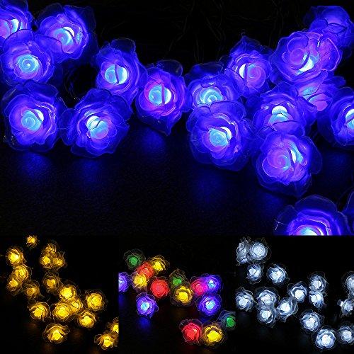 WYZworks Solar Fairy String Lights