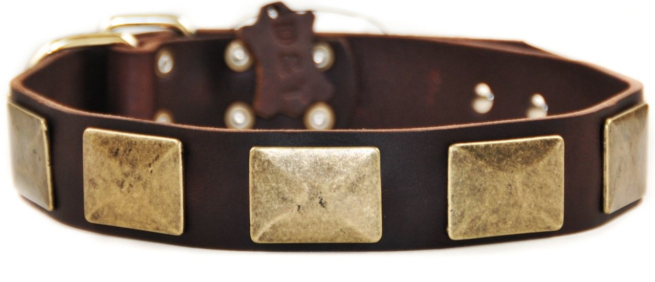 Dean & Tyler Brass Plate Dog Collar with Vintage-Style Plates and Brass Buckle, 24 by 1-1 2-Inch, Brown