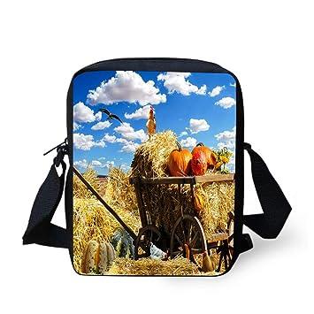 Amazon.com: Elegante bolso de mano para mujer, bolso de mano ...