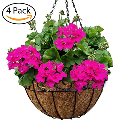 4 Pack Metal Hanging Planter Basket With Coco Coir Liner 12 Inch Round Wire Plant Holder With Chain Porch Decor Flower Pots Hanger Garden Decoration Indoor Outdoor Watering Hanging (Hanging Basket Holder)