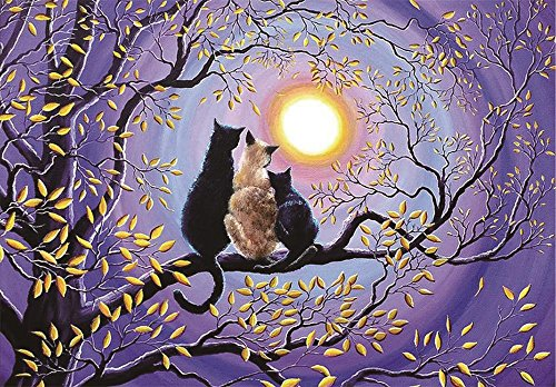 - Keeplus Large 5D Diamond Painting Kits for Adults Kids 3040cm Cat Under The Moon Partial Round Drill Embroidery Crafts Cross Stitch for Home Decoration