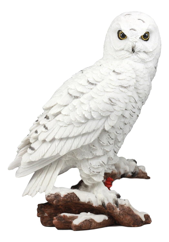 "Ebros Mystical White Snow Owl Bird Statue 12.25""Tall Nocturnal Bird Wildlife Owl Sculpture Figurine"