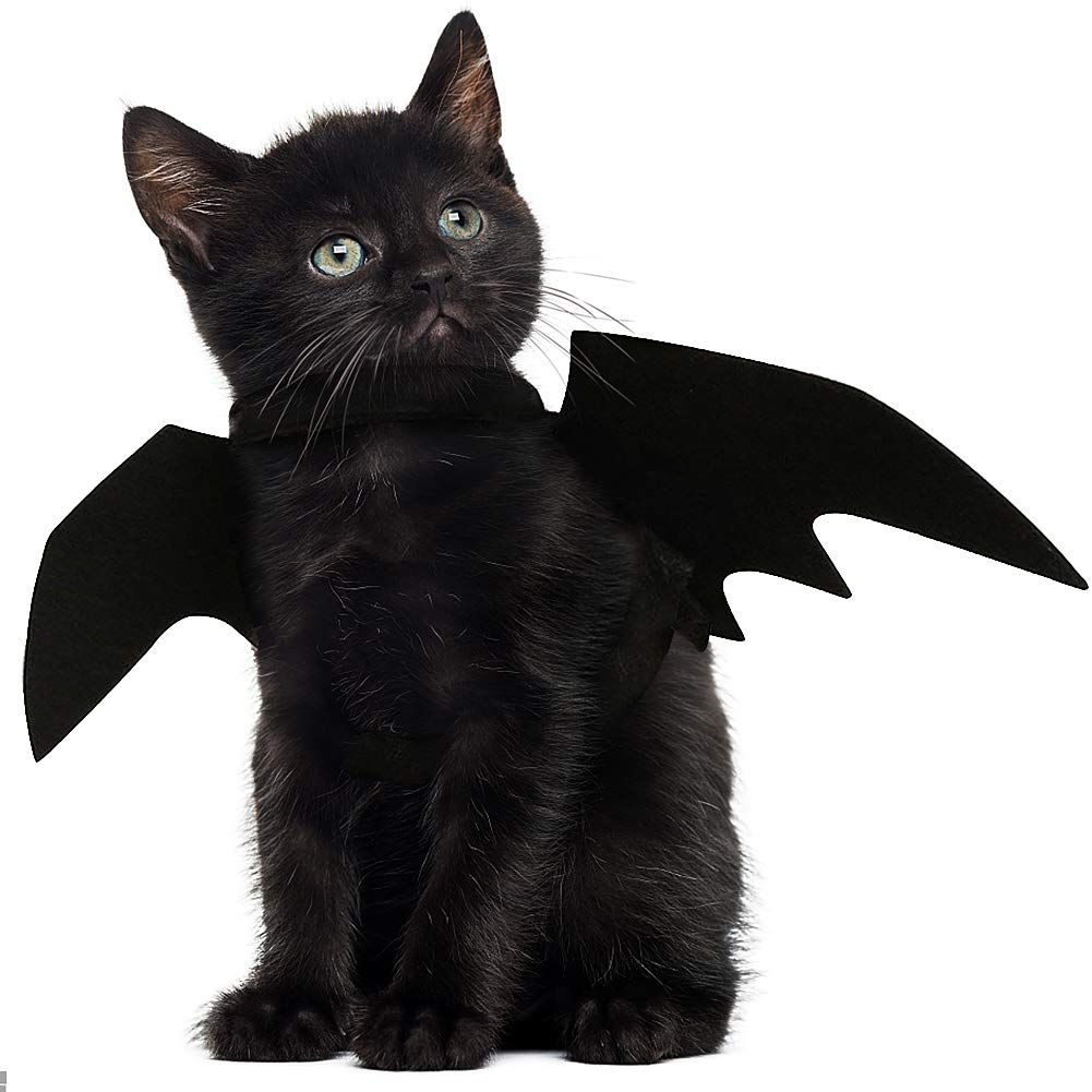 JDYW Costume da compagnia Ali di pipistrello per Gatti Cane Fancy Dress Natale Costume di Halloween per animali domestici (Parla ali)