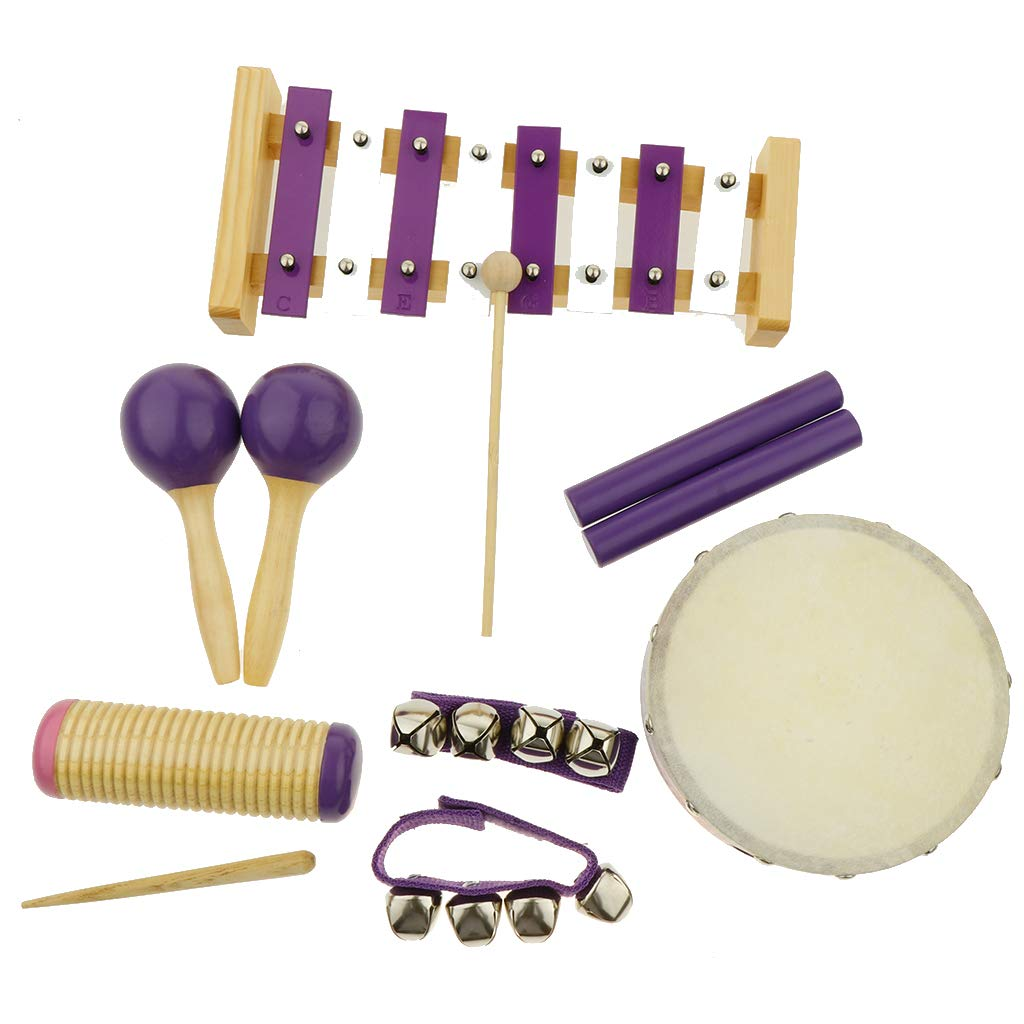 Flameer 11pcs Musical Instruments Toy Set for Toddler, Preschool and Children, 8 Kinds by Flameer (Image #4)