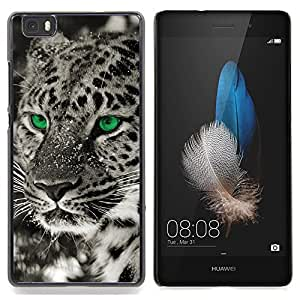 "Qstar Arte & diseño plástico duro Fundas Cover Cubre Hard Case Cover para Huawei Ascend P8 Lite (Not for Normal P8) (Ojos Negro Blanco Fotos Leopardo de invierno"")"