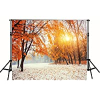 7x5 ft Sunset Red Maple Leaves Snow Photography Backdrop Background