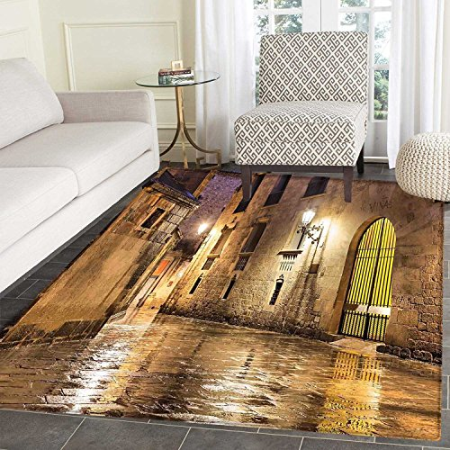 Gothic Area Silky Smooth Rugs Gothic Ancient Stone Quarter of Barcelona Spain Renaissance Heritage Night Street Photo Home Decor Area Rug 4'x5' Cream by Carl Morris