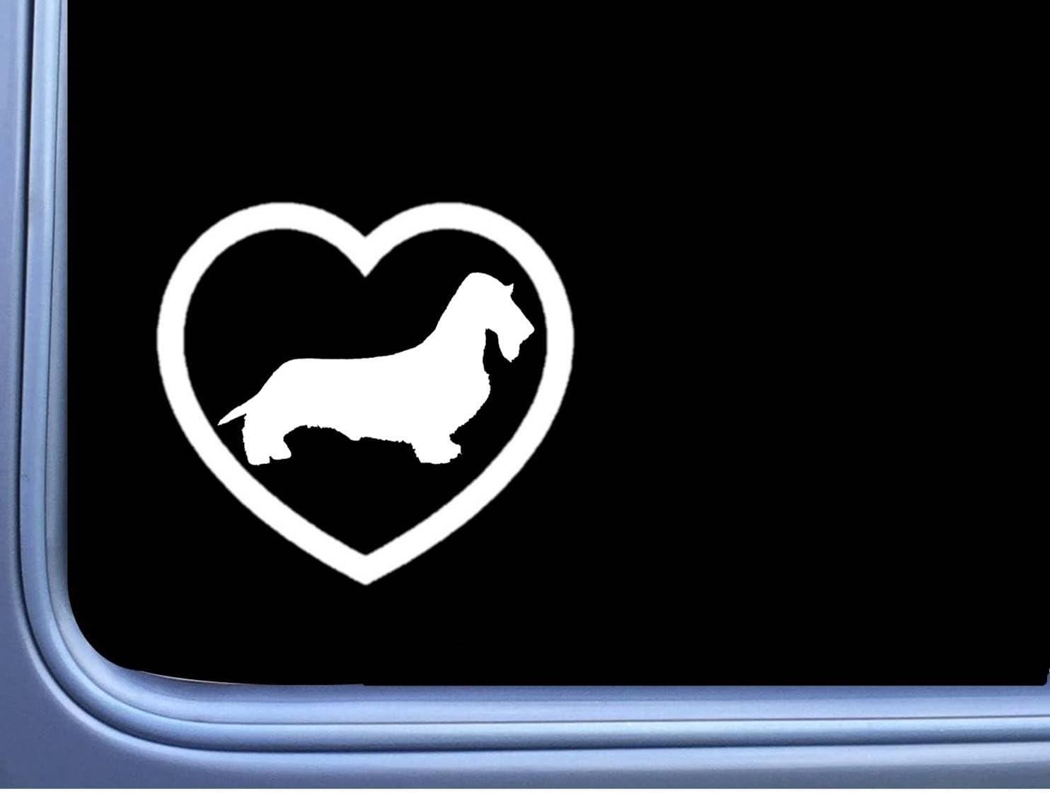 "Longhair Dachshund little Heart Decal 6/"" wide StickerJ617"