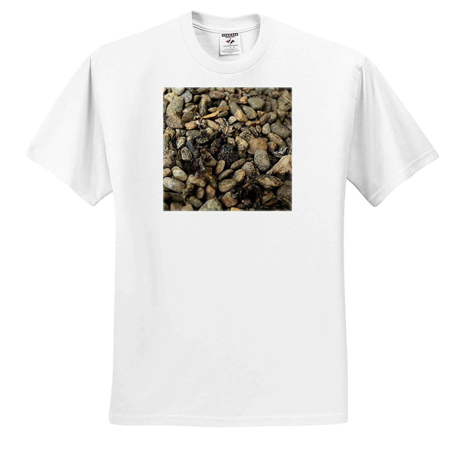 Photograph of an American Toad camouflaging Itself Among The Rocks Animals 3dRose Stamp City - T-Shirts