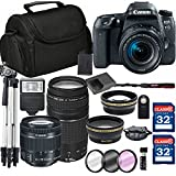 Canon EOS 77D Digital SLR Camera + 18-55mm STM + Canon 75-300mm III Lens + SD Card Reader + 64GB Memory + Remote + Accessory Bundle - International Version