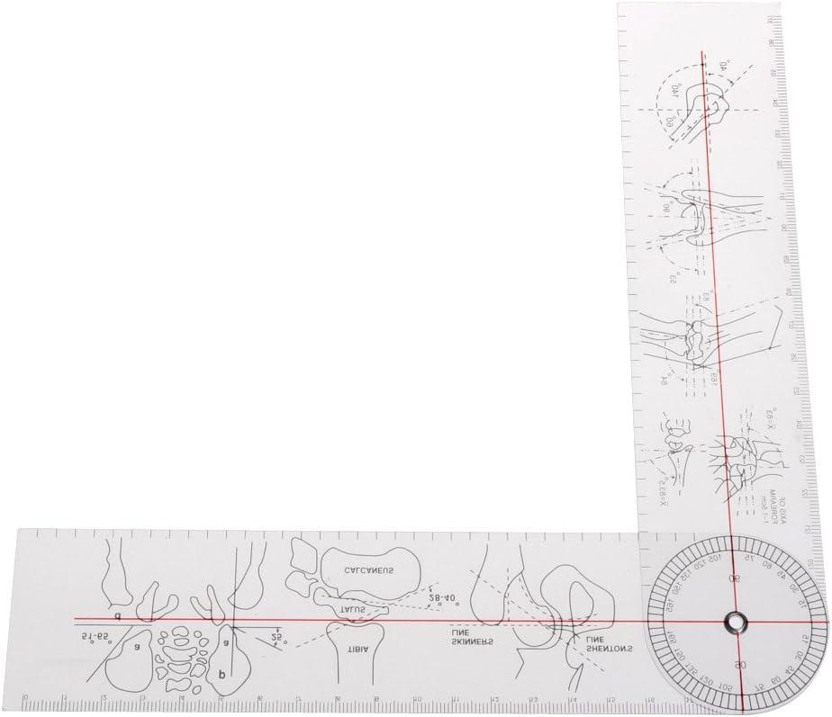 Goniómetro ángulo regla médica junta ortopédica herramienta instrumentos plástico