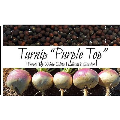 Liliana's Garden Turnip Seeds - Purple Top, White Globe - Heirloom : Garden & Outdoor