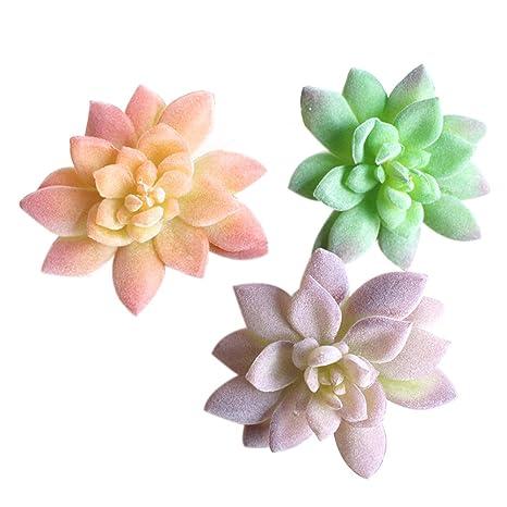Winomo 3pcs Artificiales Plantas Suculentas Flores De Cactus