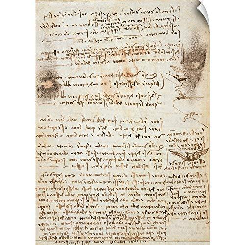 - Leonardo da Vinci Wall Peel Wall Art Print Entitled Codex on The Flight of Birds, by Leonardo da Vinci, 1505-1506. Royal Library, Turin 35