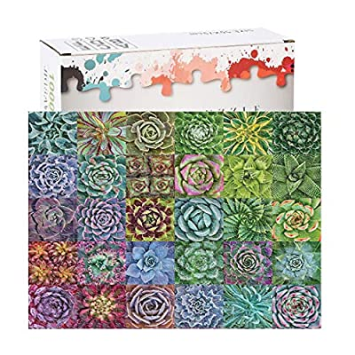 Sietore Succulent Plants 1000 Piece Adult Children Puzzle Pattern Toy Kids Educational Toy Set, Brain Iq Developing Toys Decoration: Toys & Games
