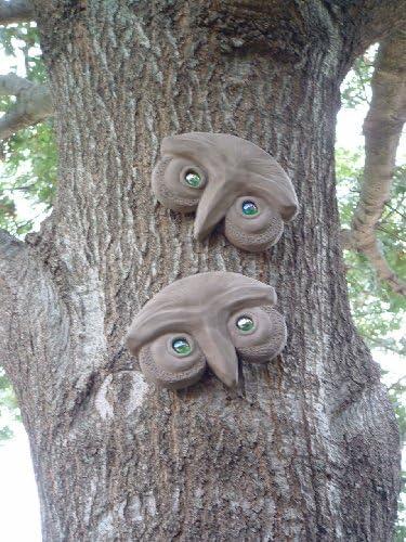 Genuine Tree Peeple Mr and Mrs Who Tree Face