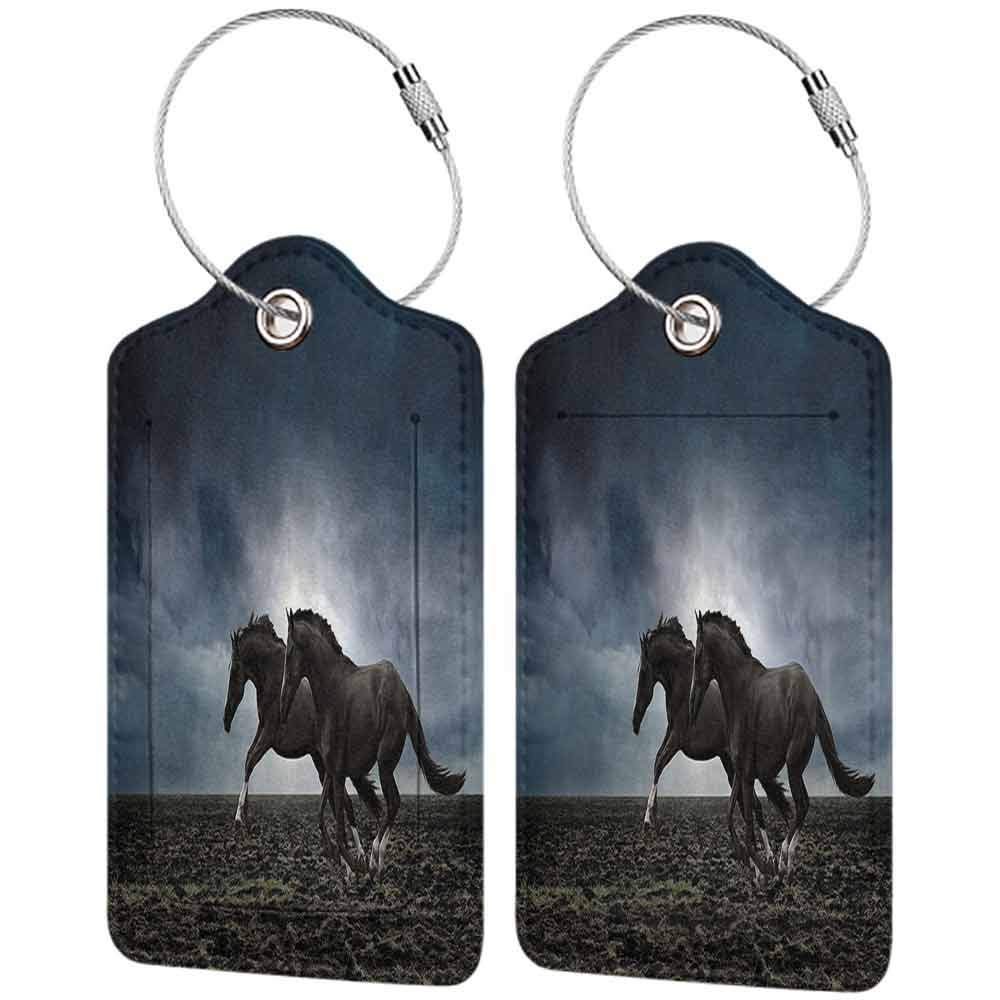 Personalized luggage tag Horses Animal Couple Horses Running on the Plowed Field in Stormy Dark Weather Sky Equestrian Concept Easy to carry Fabric W2.7 x L4.6