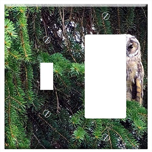 Tawny Port Bird - 1-Toggle 1-Rocker/GFCI Combination Wall Plate Cover - Owl Long Eared Owl Tawny Owl Raptor Bird Port