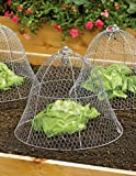 Gardener's Supply Company Chicken Wire Cloche