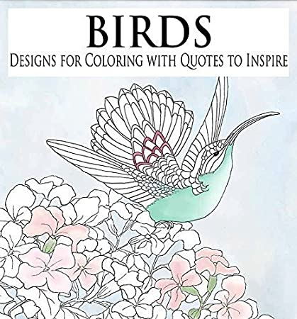 Amazoncom Birds Beautiful Designs For Coloring With