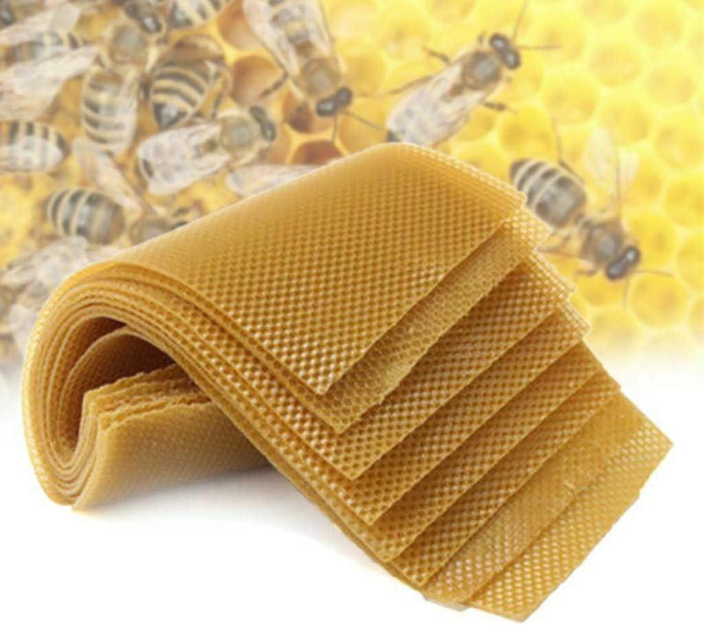 30x Honeycomb Foundation Beehive Wax Frames Waxing Beekeeping Equipment US STOCK