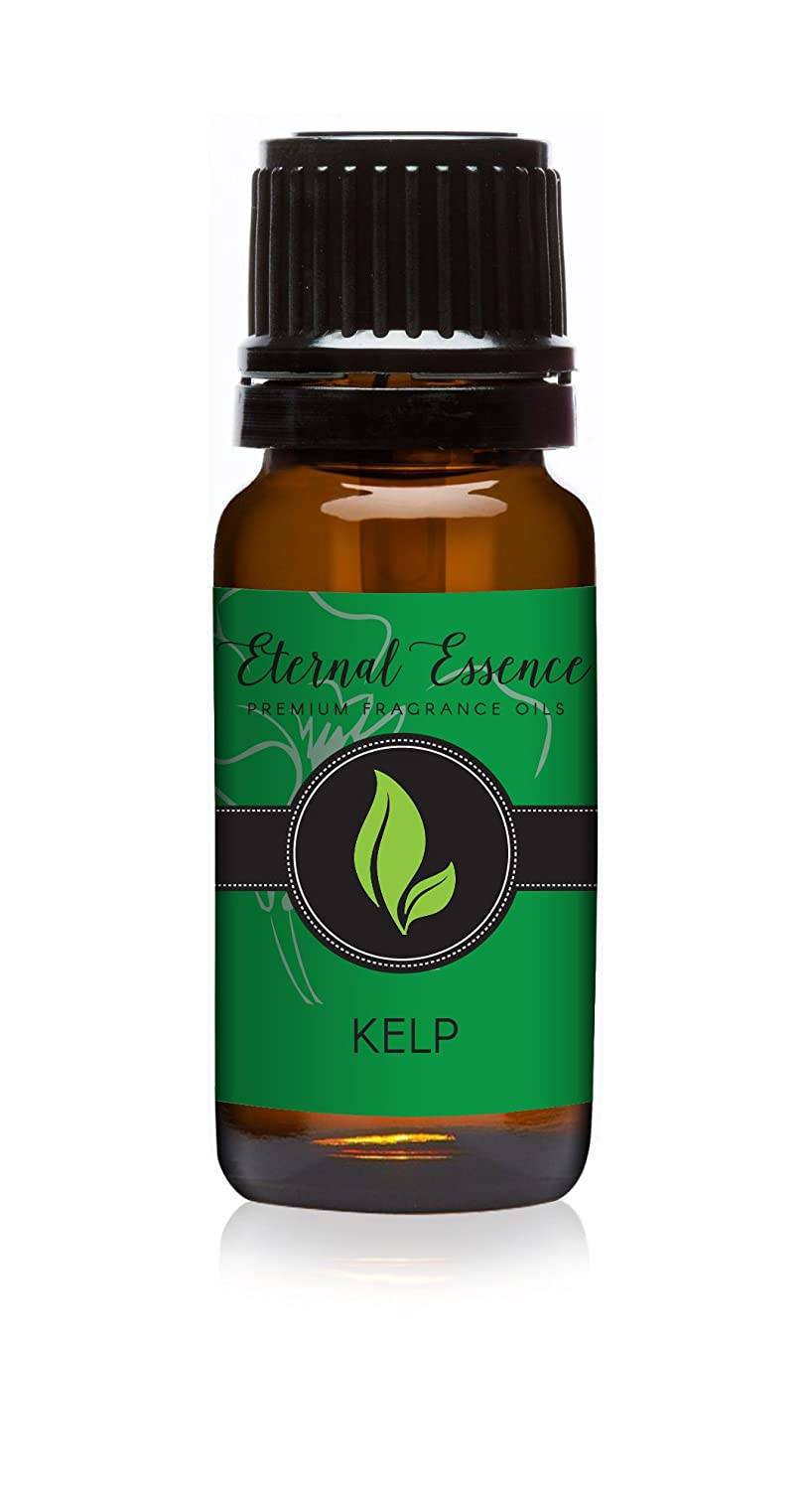 Kelp Premium Fragrance Oil - Scented Oil - 10ml