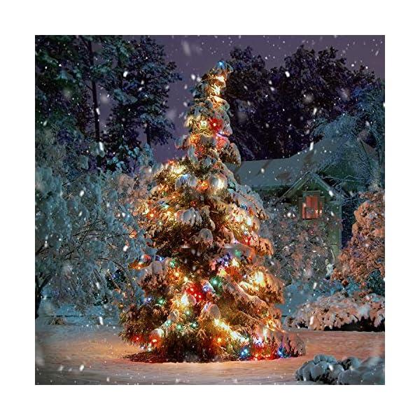 Luce della stringa,Tececu luce decorativa esterna 50 Palla LED USB, Catene Luminose 5M con 8 Modalità, per Interno/Esterno, Feste, Giardino, Natale, Matrimonio, Albero di Natale, Terrazzo 6 spesavip