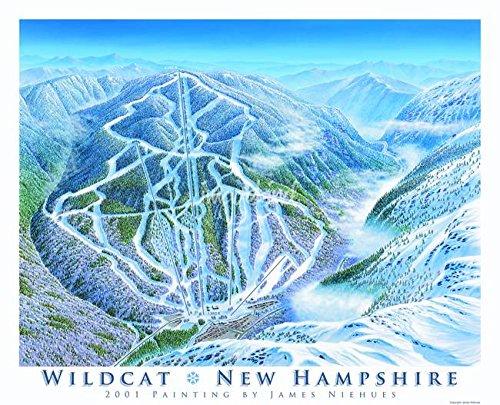 Imagekind Wall Art Print entitled Wildcat New Hampshire by James Niehues | 14 x 11 (Ski Wildcat)