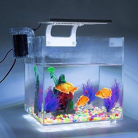 GOTOTOP Pecera de Acrílico con Iluminación LED y Filtro Interno Mini Acuario de Peces 15L 220-240V: Amazon.es: Productos para mascotas