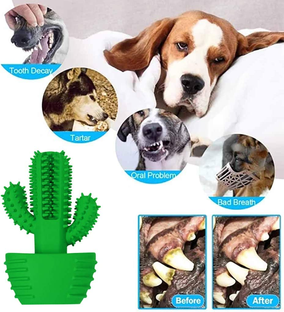 Newdiva Pet Dog Cactus Toothbrush Doggo Care Toothbrush Cleaning Oral Care Vocal toy