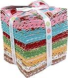 Lori Holt Bake Sale 2 30 Fat Quarters 3 Panels Riley Blake Fabrics FQ-6980-33