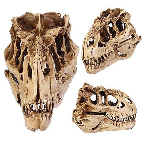 - Quietcloud Resin Crafts Dinosaur Tooth Skull Fossil Teaching Skeleton Model Halloween Decor