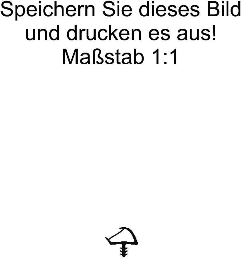 WTD 3427 Farbe Schwarz 3mm Nutbreite in Beige Weiss 5m-Holzzargendichtung T/ürdichtung 12mm Falzbreite Braun Schwarz