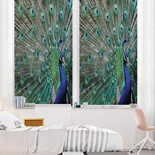 Peacock 3D No Glue Static Decorative Privacy Window Films, Peacock Displaying Elongated Majestic Feathers Open Wings Picture,24
