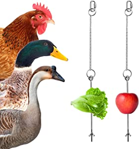 Hanging Chicken Birds Feeder Chain Toy - 2PCS Veggies Skewers Vegetable Fruit Food Holder Stainless Steel Chain Treating Feeding Tool Foraging Toys for Hens Chicken Duck Goose Large Bird
