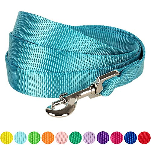 "Blueberry Pet 12 Colors Durable Classic Dog Leash 5 ft x 3/8"", Medium Turquoise, X-Small, Basic Nylon Leashes for Puppies"