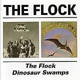 The Flock/Dinosaur Swamp /  Flock