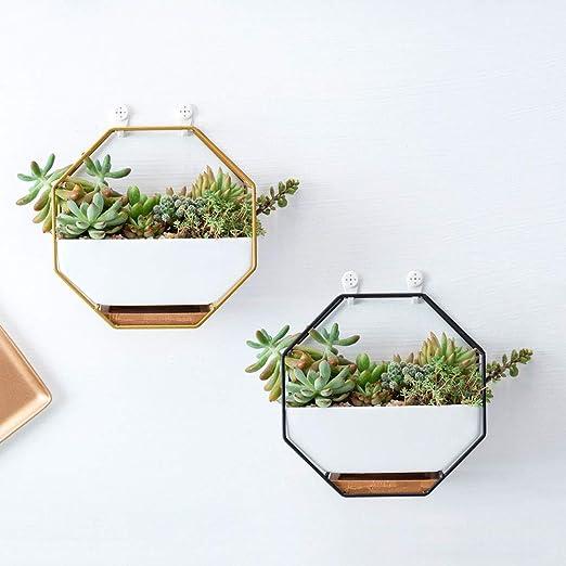A oamore Wandvase Keramik Blumentöpfe Wandbehang Pflanzer Blumenvase Töpfe Sukkulenten ideal für Zuhause oder als Büro-Dekoration